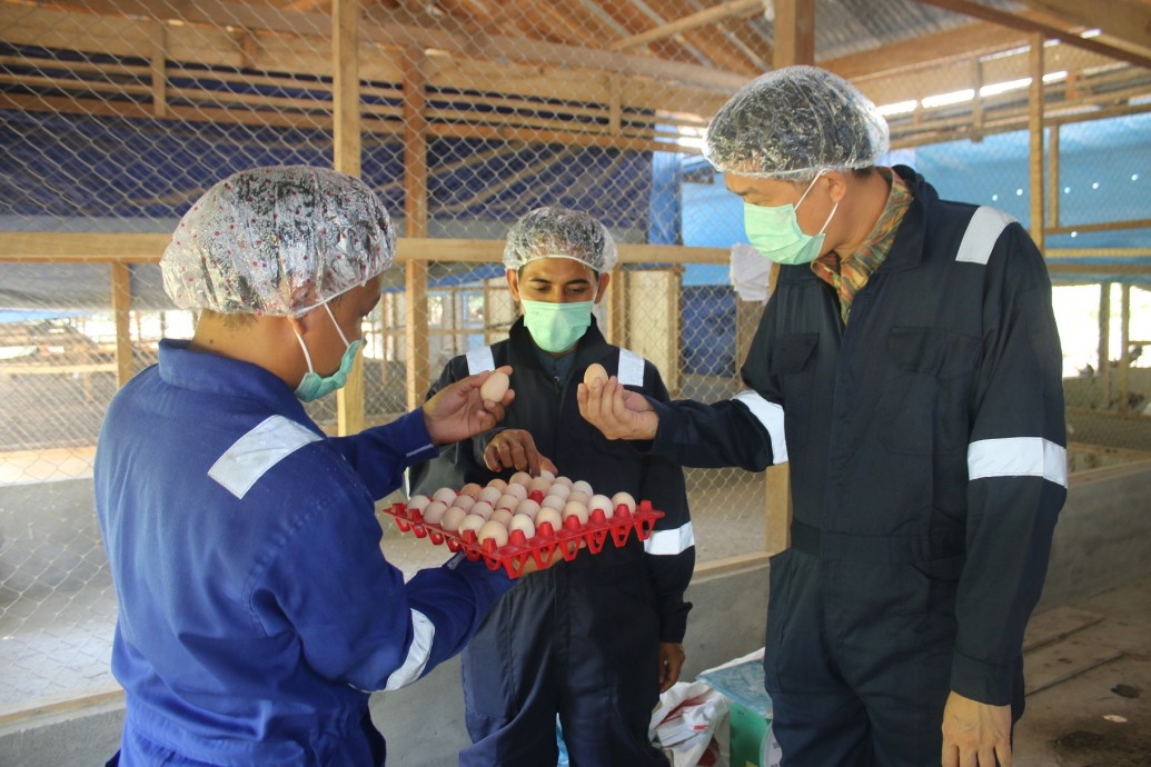 SOBIS PAMMASE (Social Enterprise Program)CSR paud Indonesia